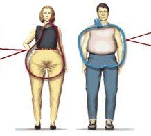 Obésité androide : Comment combattre efficacement l'obésité androide